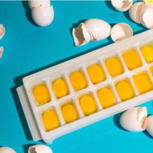 freeze your eggs to last longer