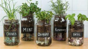 reuse your mason jar