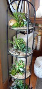 succulent plant decor idea 9