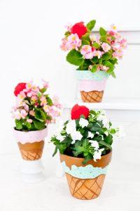 DIY Plant Potter